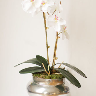DIY Orchid Planter