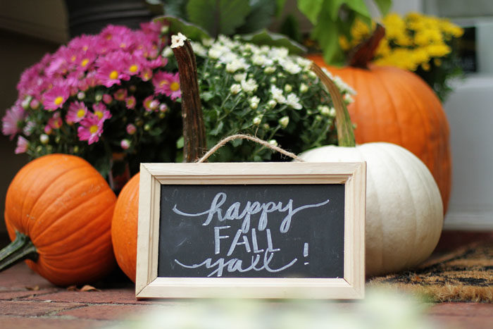 Fall Decor, Fall Plants, Mums, Pumpkins, Fall Porch, Front Porch, Front Door, Entryway