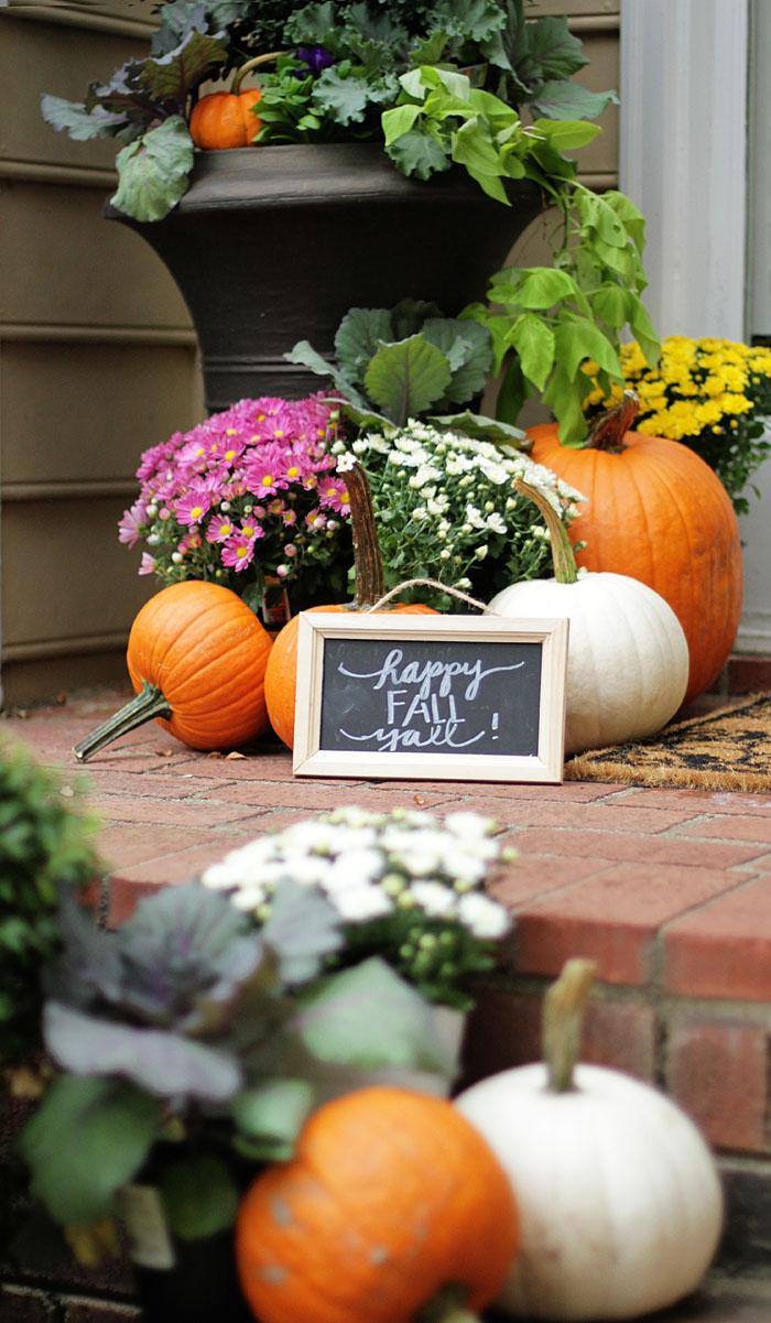 Fall Decor, Fall Plants, Mums, Pumpkins, Fall Porch, Front Porch, Front Door, Entryway