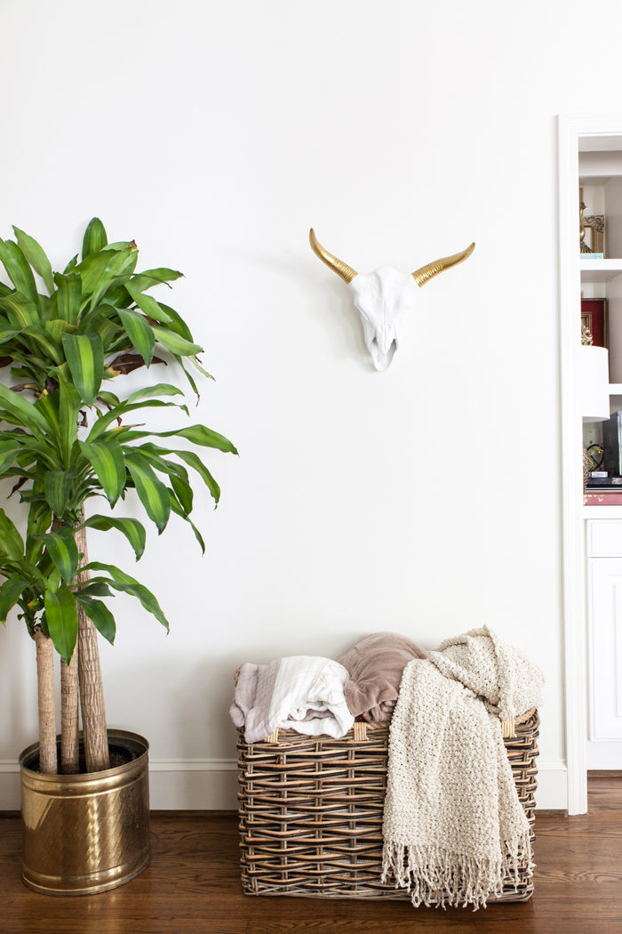 Living Room, Family room, Corn plant, faux taxidermy, storage