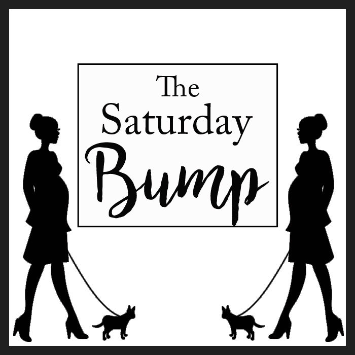 the-saturday-bump-logo